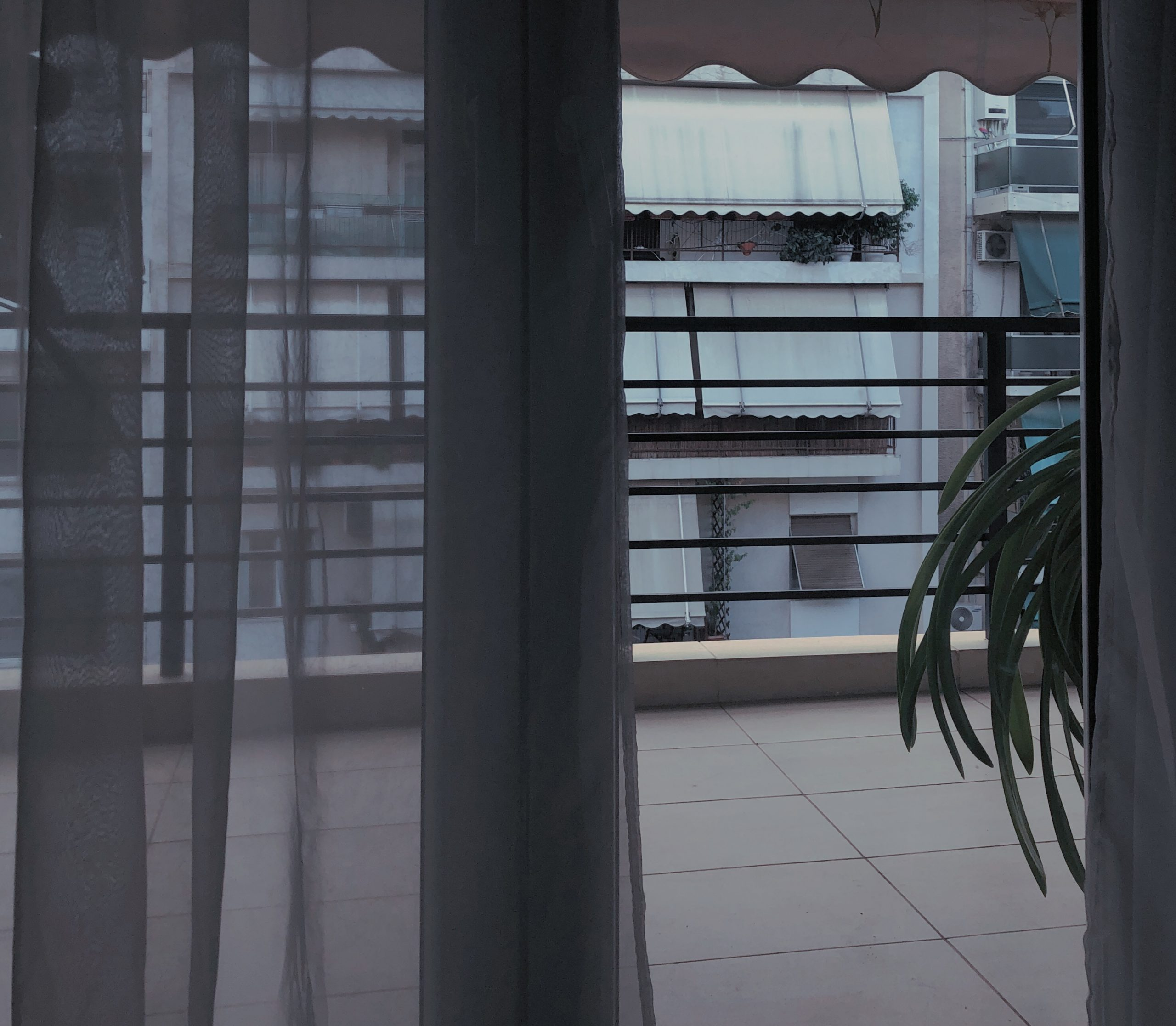 Blick aus dem Fenster auf einen Balkon und der Häuserreihe gegenüber. Die Gardine ist halb zugezogen und eine Topfpflanze schaut hinter der Wand auf dem Balkon hervor.