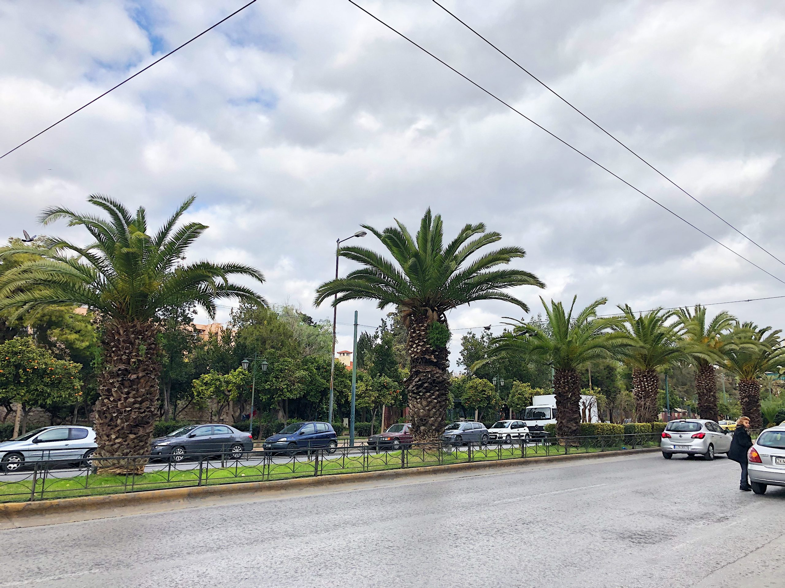 Hauptstraße in Athen, Spuren sind durch eine durchgezogenen Grünstreifen getrennt auf dem in Abständen Palmen stehen